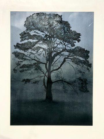 Silhouette Nocturne #9