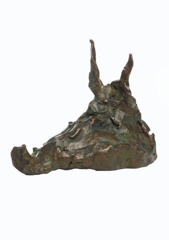 Boar Head 2011