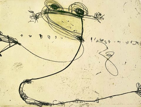 Billabong (Frog), 2002