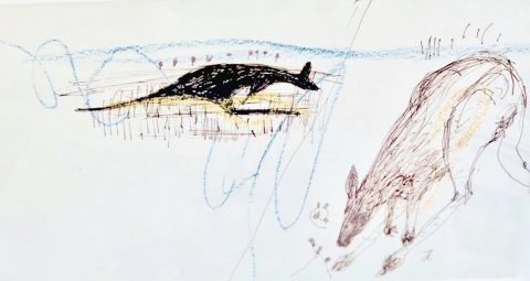 Untitled (Kangaroos), c. 1977-80