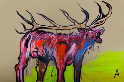 Stag, 2011